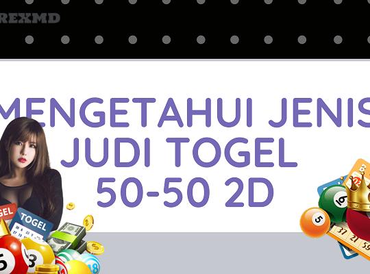 Banner Mengetahui Jenis Judi Togel 50-50 2D